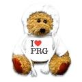 medvěd / PRG